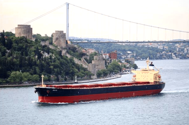 panamax bulk carrier diana shpping