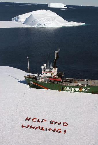 Greenpeace Ice Breaking