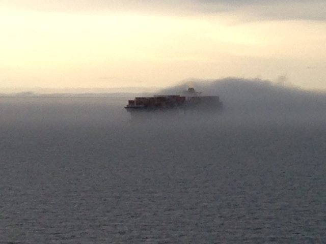 msc stella fog containership chesapeake bay